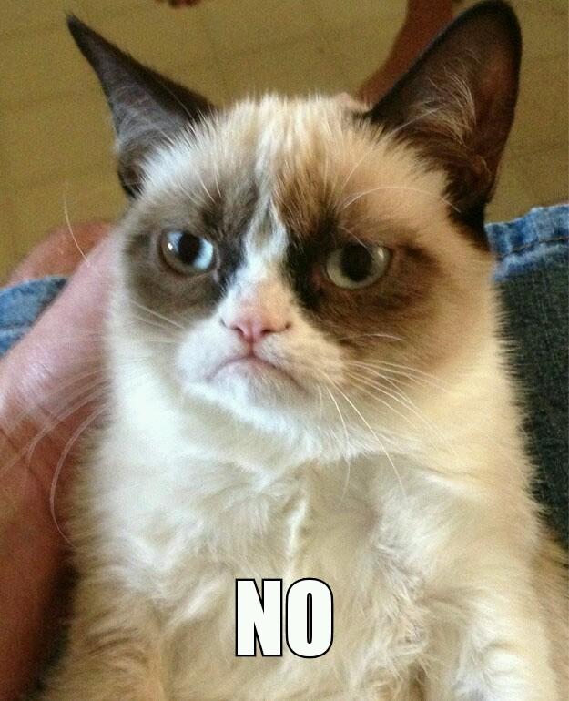 Grumpy Cat - No
